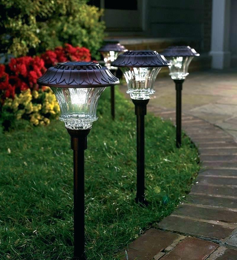 Đèn LED sân vườn năng lượng mặt trời cá tính