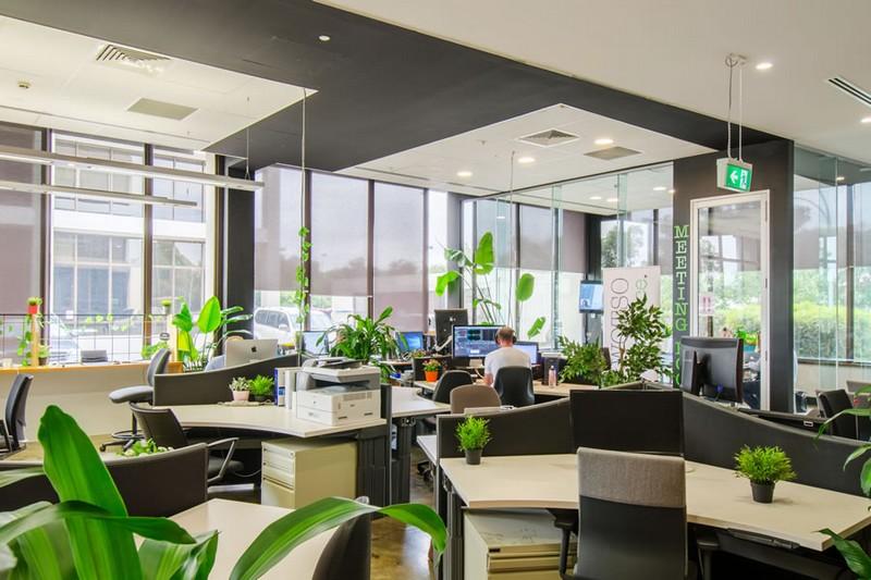 Mẫu thiết kế nội thất văn phòng với các mảng màu xanh thú vị đan xen nhau rải rác